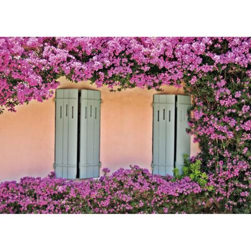 Fotocron Pencere Ve Çiçekler Tablo
