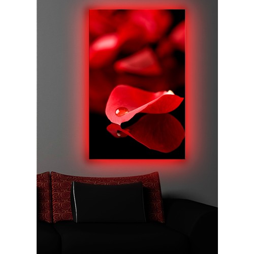 Kırmızı Yaprak Arkadan Aydınlatmalı Kanvas Tablo - 45X70 Cm