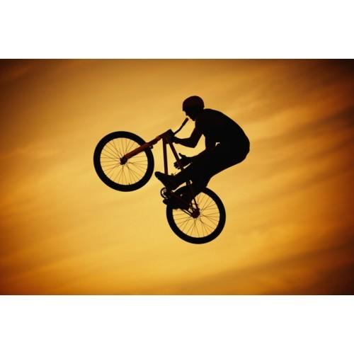 Pırıltı Vizyon Bisiklet Tablo
