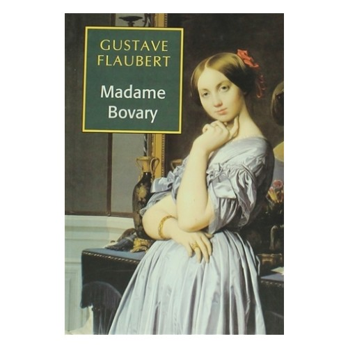 essays written on madame bovary