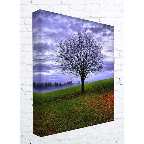 Kanvas Tablo - Ağaç - Agc024