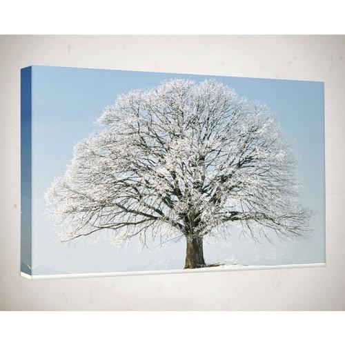 Kanvas Tablo - Ağaç- Agc026