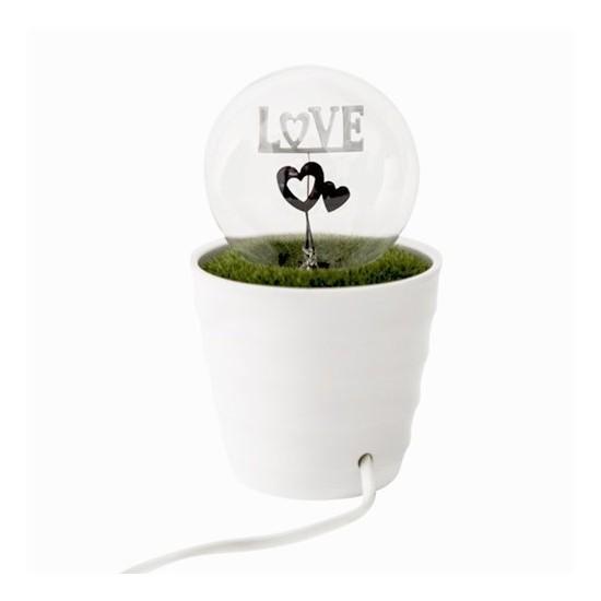 BuldumBuldum Potted Plant Night Light - Romantik Saksı Gece Lambası
