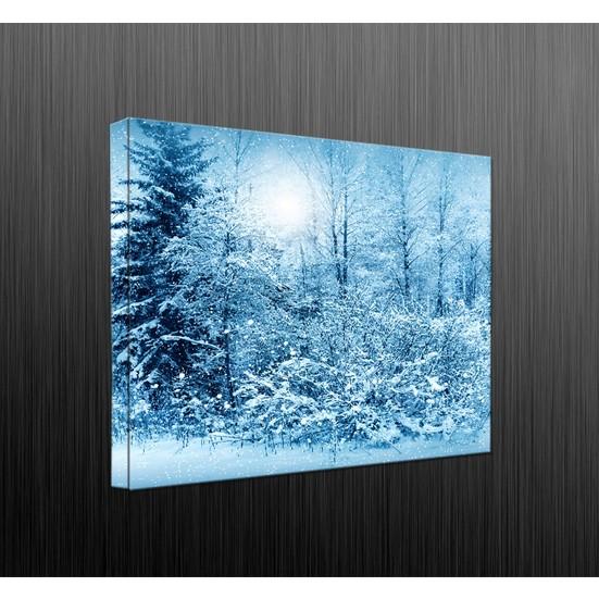 Duvar Tasarım DLC6057 Led Işıklı Kanvas Tablo - 60x40 cm