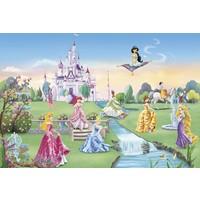 Disney Edition 8-414 Prensesler Duvar Posteri