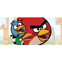 Parti Şöleni Angry Birds Doğum Günü Parti Seti 16 Kişilik