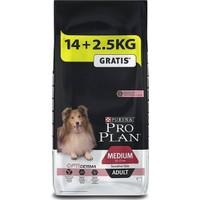 Pro Plan Adult Sensitive Somonlu Hassas Yetişkin Köpek Maması 16,5 Kg