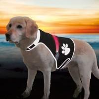 Trixie Köpek Işikli Fosforlu Güvenlik Yeleği S,Siyah
