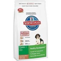 Hills Puppy Lamb Rice Kuzu Pirinçli Yavru Köpek Maması 3 Kg