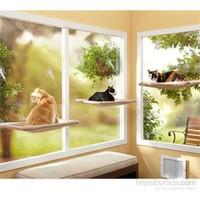 Vip Pet Zoom Kedi Pencere Yatağı