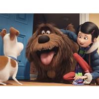 Ravensburger 150 Parça Puzzle : Evcil Hayvanların Gizli Yaşamı