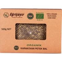 Eğriçayır Karakovan Bal Organik 500G