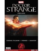 Marvel Comics Marvels Doctor Strange Prelude #1 (Of 2)