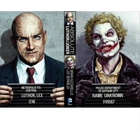 Dc Comics Absolute Joker Luthor Hc