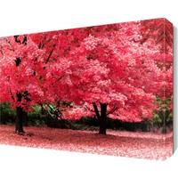 Dekor Sevgisi Pembe Ağaçlar Canvas Tablo 45x30 cm