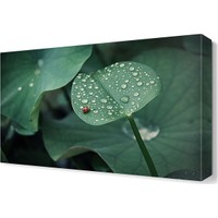 Dekor Sevgisi Yaprak ve Uğur Böceği Tablosu 45x30 cm