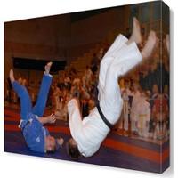 Dekor Sevgisi Sambo Dövüş Tablosu 40x40 cm