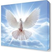 Dekor Sevgisi Güneşli Havada Güvercin Tablosu 45x30 cm