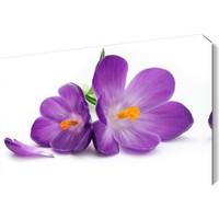 Dekor Sevgisi Mor İki Çiçek Tablosu 45x30 cm