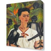 Dekor Sevgisi Maymun Bakıcısı Canvas Tablo 45x30 cm
