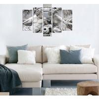 Decor Desing 5 Parçalı Dekoratif Tablo D5Tp203