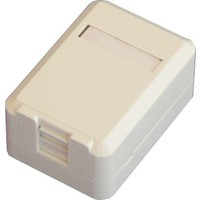 Dorax 2 Port Shutter Kapaklı Sıva Üstü Data Prizi (Boş) Dr-6104-2Pb