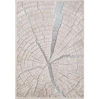 Pierre Cardin Arcadia 2319B 160X230 Oval Halı