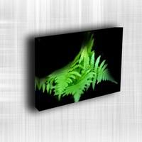 Doku Canvas Baskı Çiçek- CIGE353