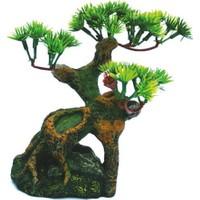 Chicos-Dekor Bonsai (10X9X16)