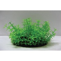 Langhu Plastik Bitki 9 Cm