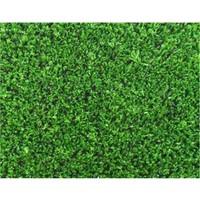 Samur Kupon Çim Halı Yeşil En 1 Metre
