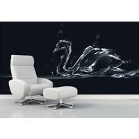 Siyah Kuğu 001 Duvar Sticker 250x250cm