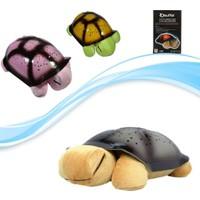 Pratik Türkçe Ninnili Kaplumbağa Gece Lambası (Kahverengi)