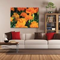 Tablom Turuncu Çiçekler Kanvas Tablo