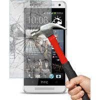 CaseUp HTC One M7 CaseUp Ekran Koruyucu