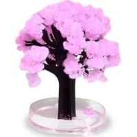 Mudos Magic Sakura - Sihirli Ağaç