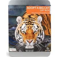 Giftrepublic Bir Büyük Kedi Evlat Edin - Adopt A Big Cat