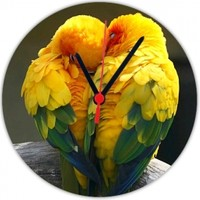 Fotografyabaskı Cennet Papağanı 20 Cm Yuvarlak Hdf Saat Baskı