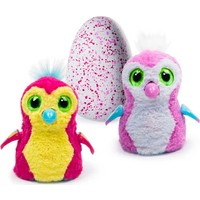 Hatchimals Pengualas