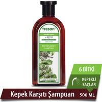 Tresan 6 Bitki Kepek Karşıtı Şampuan 500 Ml - Kepekli Saçlar