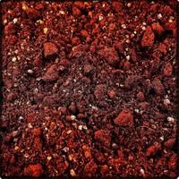 Seyma Çiçekçilik Kaktüs Toprağı 5 Litre
