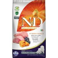 N&D Pumpkin Tahılsız Bal Kabaklı, Kuzu Etli Ve Yaban Mersinli Orta Ve Büyük Irk Yavru Köpek Maması 12Kg
