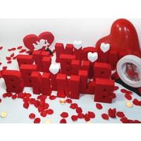Harfdekor Evlilik Teklifi Seti Benimle Evlenir Misiniz + Gül Yaprağı + Mum + Balon + Çerçeve + Kalp (Ölçü 15-4 Cm)