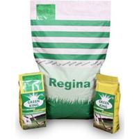 Regina İthal Çim Tohumu 5M 1 Kg