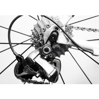 Superb Acil Durum Kadro Kulağı Tb-Et05 Siyah