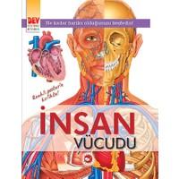 İnsan Vücudu: Dev Posterli Kitabım