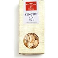 Rasayana Zencefil - Kök 50 Gr.
