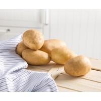 Çanakkaleden Taze Patates 1 Kg