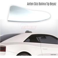 Carub Anten Süs Balina Tip Beyaz