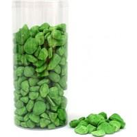 Greenmall Teraryum Taşı Büyük 1 Kg (Yeşil)